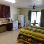 ADA Bedroom and Kitchen.