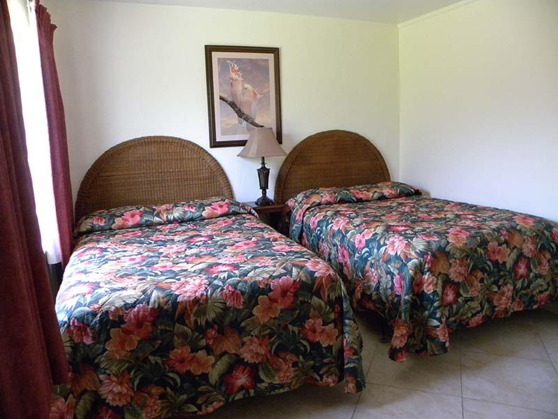 SE2D Beds