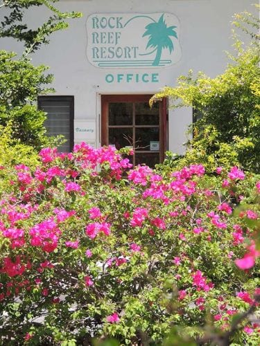 Rock Reef Resort Office
