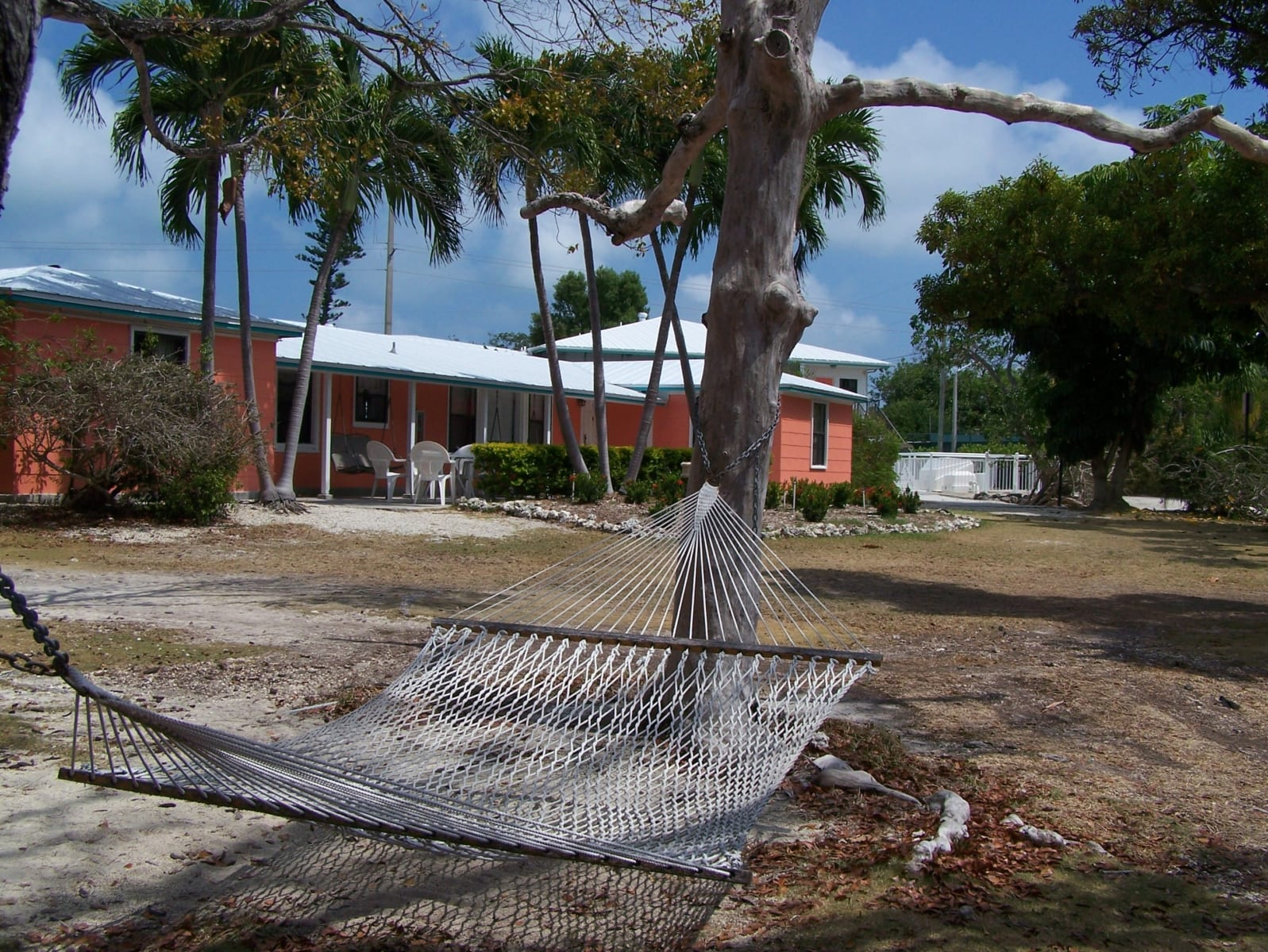 Beach Cottage exterior and hammock.